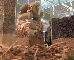 <strong>Menfi</strong>. Centrale a biomassa, il comitato civico incalza il sindaco Botta