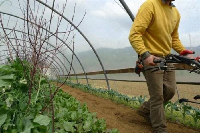 <strong>Agricoltura</strong>. Gli agricoltori: non sospendete gli aiuti. Senza le agevolazioni fiscali siamo finiti
