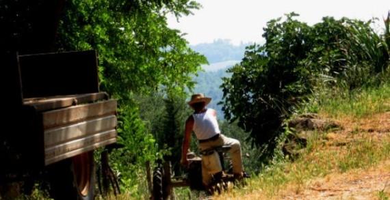 <strong>Rapporto Svimez</strong>. L&#8217;agricoltura potrà salvare il &#8220;povero&#8221; Sud