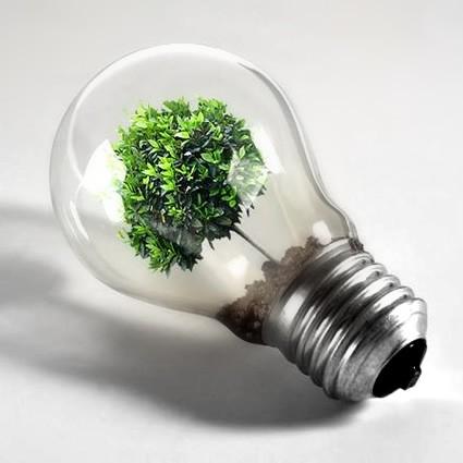 <strong>Energia rinnovabile</strong>. La Sicilia é un posto strategico per chi vuole puntare su queste fonti
