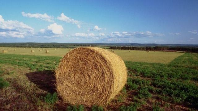 <strong>Ribera</strong>. Imu, vertice di amministratori. I sindaci dei Comuni agrigenti si riuniscono per non pagare l'imposta sui terreni agricoli