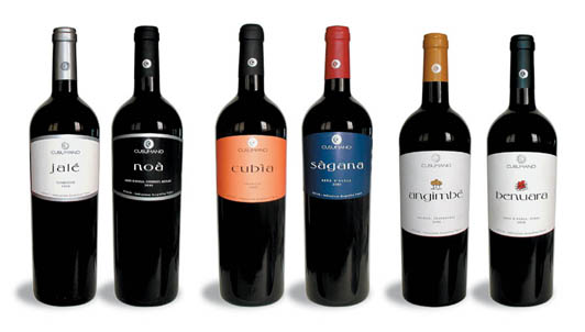 <strong>Cusumano</strong>. Ogni goccia di vino, un capolavoro!