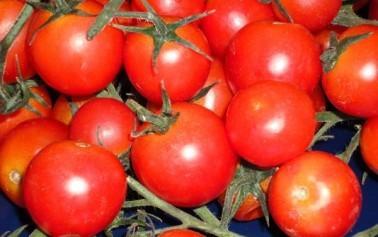 <strong>Pomodorini Siciliani</strong>, il buono che fa bene alla salute. E' rinfrescante, dissetante, ha effetti diuretici, ricco di licopene e di caroteni, sostante che agevolano il corretto funzionamento dell'organismo e lo difendono dai radicali liberi.