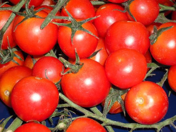 <strong>Pomodorini Siciliani</strong>, il buono che fa bene alla salute. E&#8217; rinfrescante, dissetante, ha effetti diuretici, ricco di licopene e di caroteni, sostante che agevolano il corretto funzionamento dell&#8217;organismo e lo difendono dai radicali liberi.