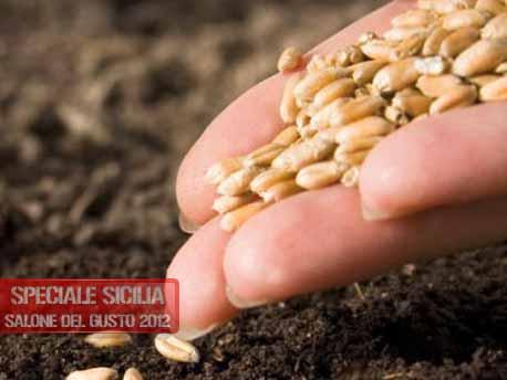 """<strong>Salone del Gusto e Terra Madre 2012</strong>. Slow Food Sicilia e """"Grani Antichi di Sicilia e Orto in Carcere"""""""