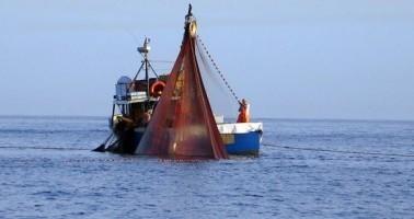 """Tagli alle giornate di pesca, Eurodeputati PD: """"Commissione adotti misure alternative che garantiscano diritto alla pesca"""""""