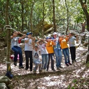 Scuola Foresta