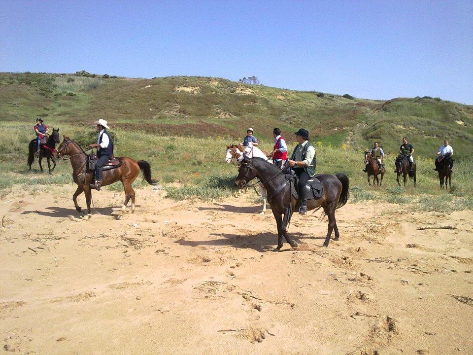 Cavalieri del Borgo Millusiano