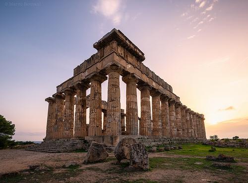 Asini spazzini al Parco archeologico di Selinunte