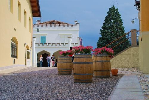 <strong>Cantine aperte</strong>. Oggi anche nell'Isola 25 aziende accoglieranno i buongustai vitivinicoli