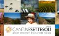 I sei giganti di <strong>Cantine Settesoli</strong> diventano opere d&#8217;arte