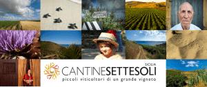Cantine_Settesoli_Menfi