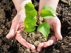prodotti_agricoltura_biologica_sicilia