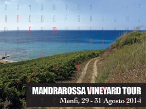 Menfi_mandrarossa_vineyard_tour