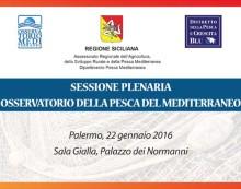 Domani all'ARS si riunisce l'Osservatorio della Pesca del Mediterraneo