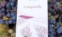 """""""Campanella"""": il romanzo di Maria Cristina Sarò nato tra i vigneti di Menfi"""