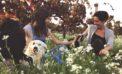 Massimo riconoscimento per il vino Marilina Doc Eloro Pachino Riserva 2009 della Cantina Marilina di Noto