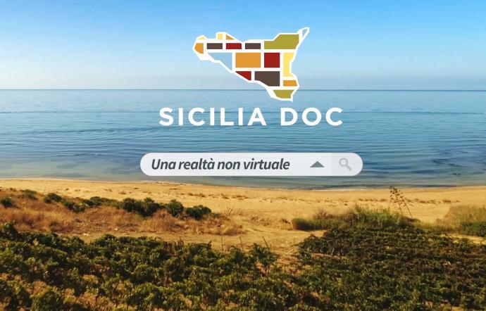 Vino, cresce la Vino Doc Sicilia: nel 2019 prodotte 95 milioni di bottiglie +19%
